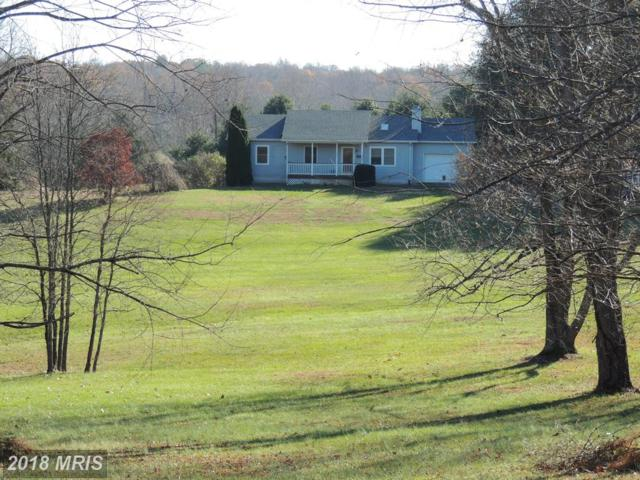 6369 Riverbend Lane, Reva, VA 22735 (#CU10107571) :: Pearson Smith Realty