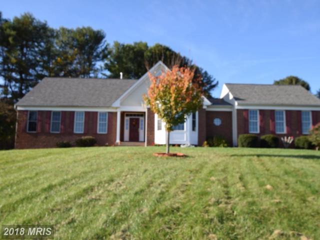 11733 James Madison Highway, Culpeper, VA 22701 (#CU10111238) :: Pearson Smith Realty