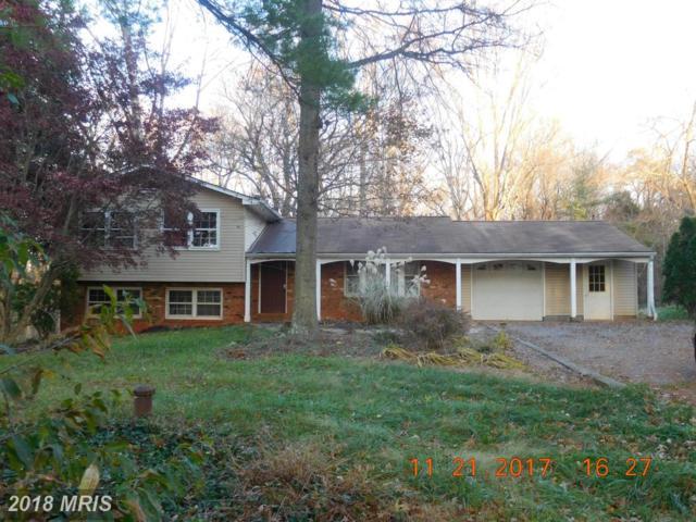 12137 Dogwood Lane, Culpeper, VA 22701 (#CU10117693) :: Pearson Smith Realty