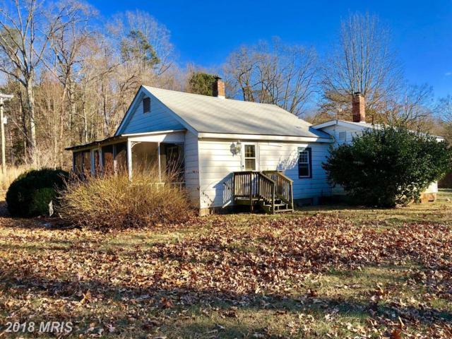16588 Bleak Hill Road, Culpeper, VA 22701 (#CU10130048) :: Pearson Smith Realty