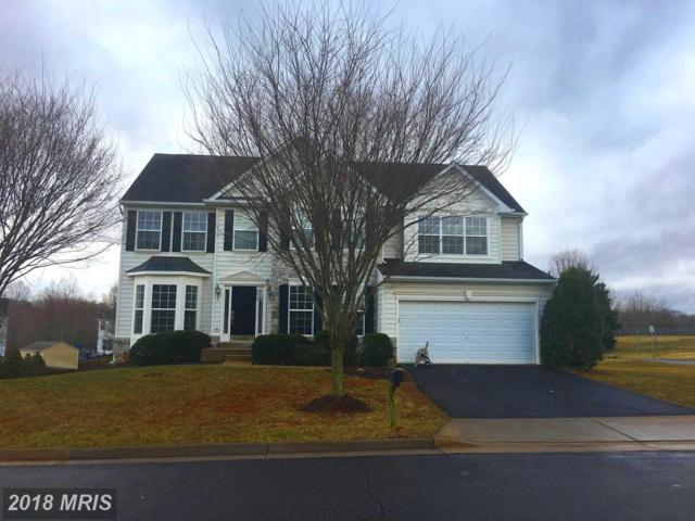 856 Fox Den Road, Culpeper, VA 22701 (#CU10133789) :: Pearson Smith Realty