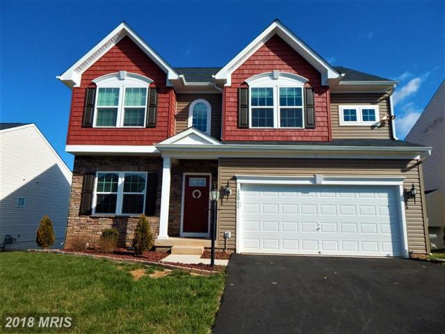 12011 Live Oak Drive, Culpeper, VA 22701 (#CU10185317) :: Advance Realty Bel Air, Inc