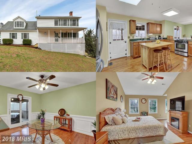 12725 Chestnut Lane, Rixeyville, VA 22737 (#CU10188512) :: Green Tree Realty