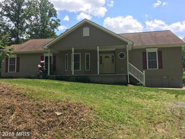 11135 Scotts Mill Road, Culpeper, VA 22701 (#CU10262535) :: Bob Lucido Team of Keller Williams Integrity