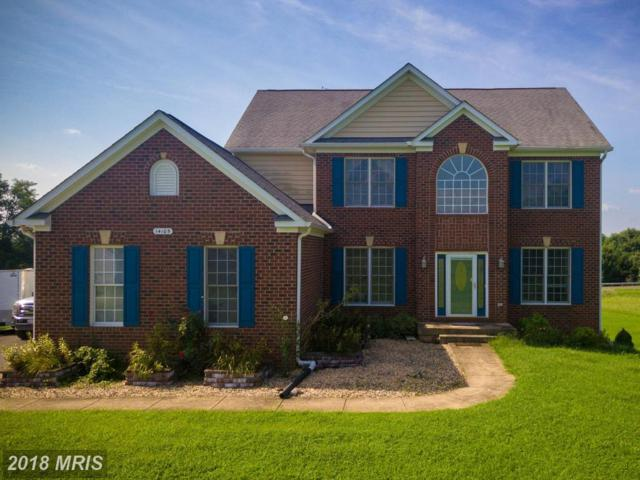 14105 Cherrywood Place, Culpeper, VA 22701 (#CU9014519) :: Browning Homes Group