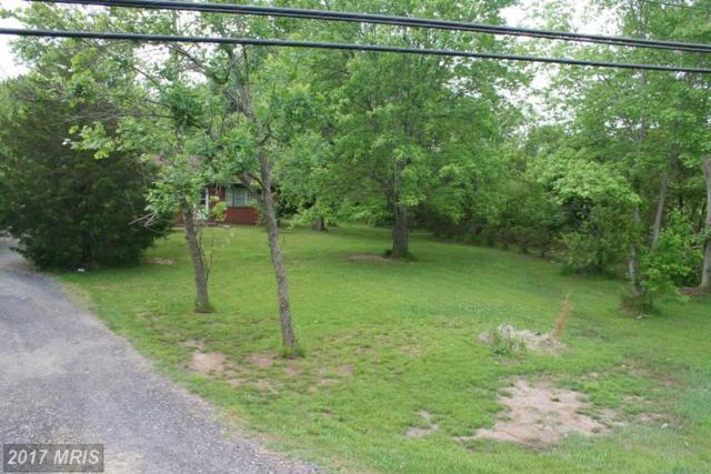 16328 Brandy Road, Culpeper, VA 22701 (#CU9712195) :: LoCoMusings
