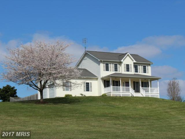 16410 Hudson Mill Road, Culpeper, VA 22701 (#CU9899991) :: Pearson Smith Realty