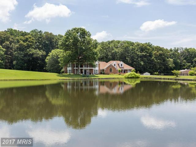 19427 Rolling Hills Drive, Culpeper, VA 22701 (#CU9911863) :: Pearson Smith Realty