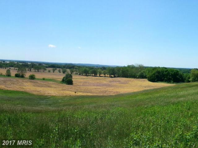 Triview Avenue, Culpeper, VA 22701 (#CU9923348) :: Pearson Smith Realty