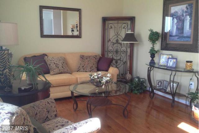14012 Belle Avenue, Culpeper, VA 22701 (#CU9925212) :: LoCoMusings