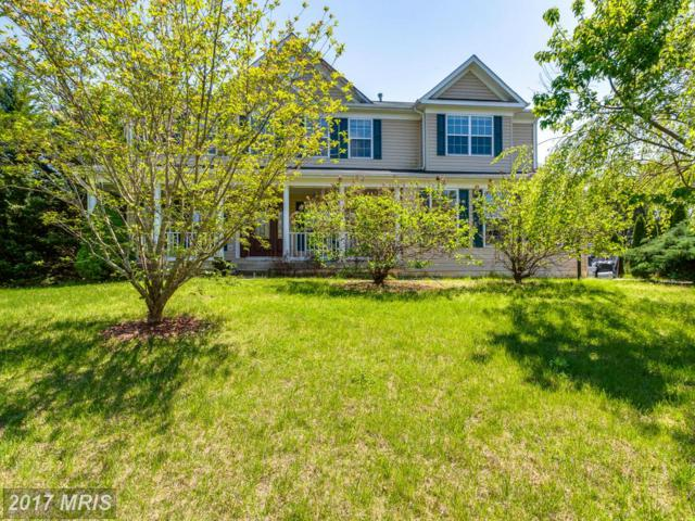 17158 Paddington Court, Jeffersonton, VA 22724 (#CU9931014) :: Pearson Smith Realty