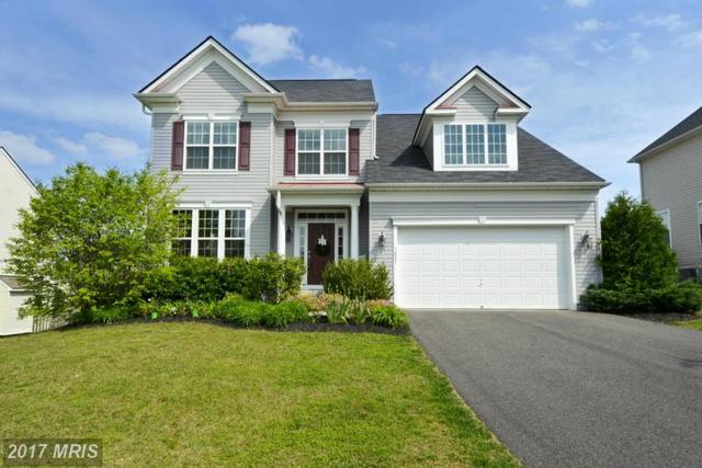 1021 Scarlet Lane, Culpeper, VA 22701 (#CU9931095) :: LoCoMusings