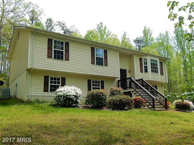 8450 Curling Creek Lane, Rixeyville, VA 22737 (#CU9931313) :: LoCoMusings