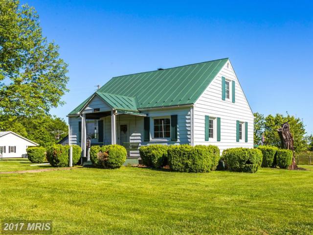 19273 York Road, Stevensburg, VA 22741 (#CU9940167) :: Pearson Smith Realty