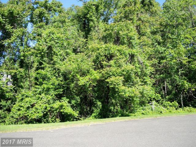 Pond View Court, Culpeper, VA 22701 (#CU9955660) :: Pearson Smith Realty