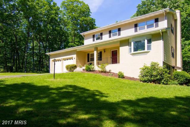 13523 Stonehouse Mountain Road, Culpeper, VA 22701 (#CU9960402) :: LoCoMusings
