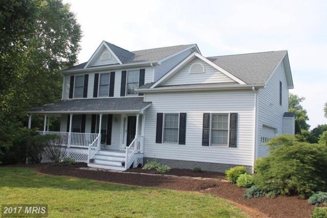 14016 Dutch Drive, Culpeper, VA 22701 (#CU9975842) :: LoCoMusings