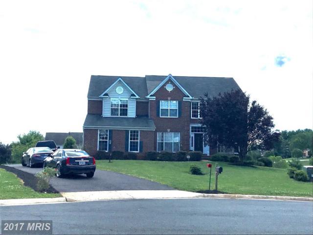 15204 Prairie Court, Culpeper, VA 22701 (#CU9982976) :: Pearson Smith Realty