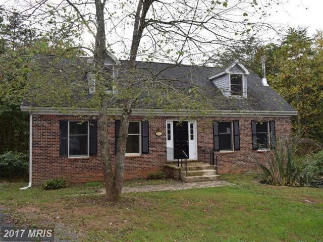 10012 Dutch Hollow Road, Rixeyville, VA 22737 (#CU9991910) :: LoCoMusings