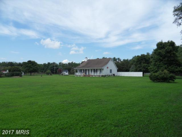 6807 Gravel Branch Road, Hurlock, MD 21643 (#DO10006073) :: Pearson Smith Realty