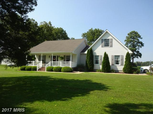 1905 White Haven Drive, Church Creek, MD 21622 (#DO10014455) :: Pearson Smith Realty