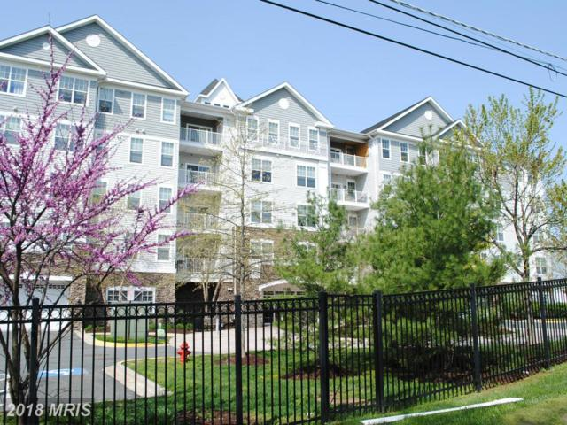 700 Cattail Cove 301-A, Cambridge, MD 21613 (#DO10017566) :: RE/MAX Coast and Country