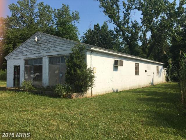 2909 Ocean Gateway, Vienna, MD 21869 (#DO10025493) :: The Maryland Group of Long & Foster