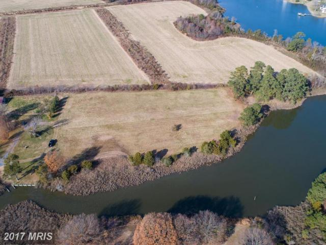 Taylors Island Road, Woolford, MD 21677 (#DO10059809) :: Pearson Smith Realty
