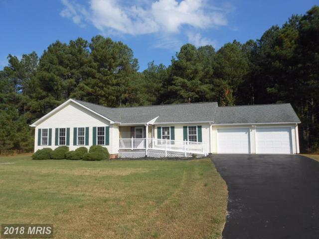 5913 Heather Lane, Cambridge, MD 21613 (#DO10095315) :: RE/MAX Coast and Country