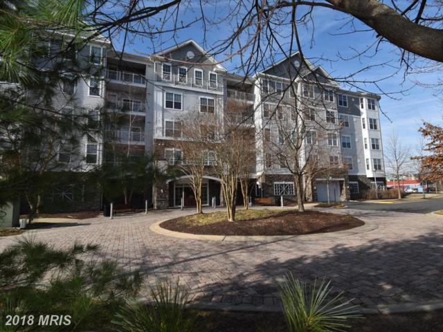 700 Cattail Cove #103, Cambridge, MD 21613 (#DO10131556) :: Pearson Smith Realty
