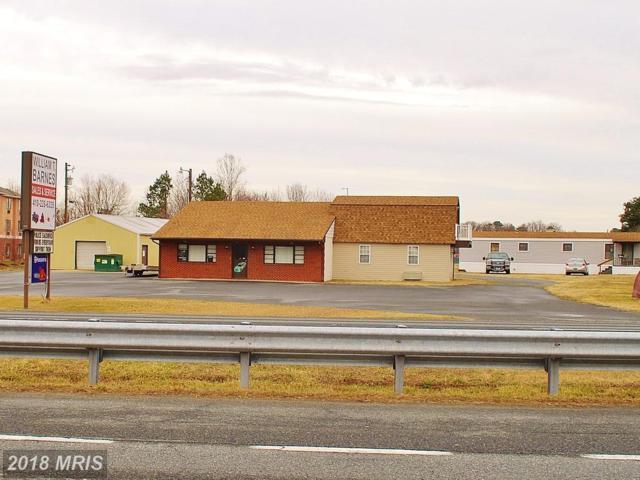 2938 Ocean Gateway, Cambridge, MD 21613 (#DO10171639) :: Keller Williams Pat Hiban Real Estate Group