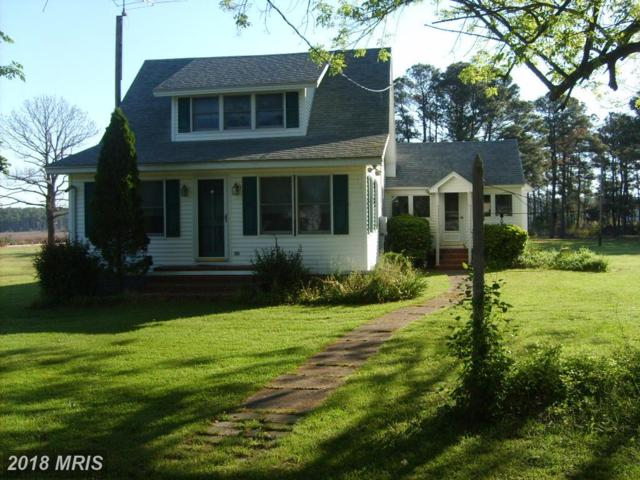 1221 Mcglaughlin Road, Fishing Creek, MD 21634 (#DO10237587) :: Eric Stewart Group