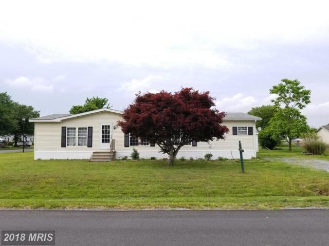 3902 Heritage Way, East New Market, MD 21631 (#DO10243728) :: RE/MAX Plus