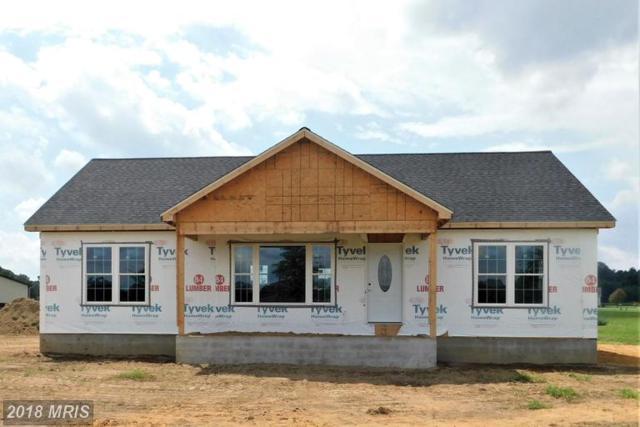 6729 Jayar Way, Hurlock, MD 21643 (#DO10335136) :: Labrador Real Estate Team