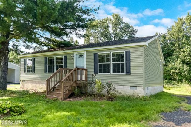 4815 Ocean Gateway Rt 731, Vienna, MD 21869 (#DO10354772) :: Circadian Realty Group