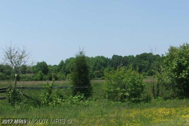6111 Red Haven Road, East New Market, MD 21631 (#DO9685772) :: Pearson Smith Realty
