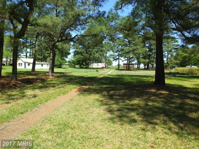 2545 County Road, Fishing Creek, MD 21634 (#DO9935255) :: Pearson Smith Realty