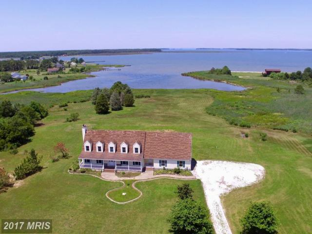 1312 Taylor Island Road, Madison, MD 21648 (#DO9942724) :: Pearson Smith Realty
