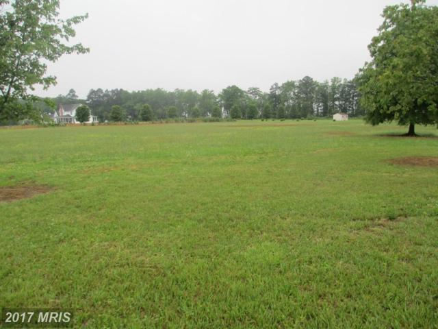 Woodland Drive, Rhodesdale, MD 21659 (#DO9955993) :: Pearson Smith Realty