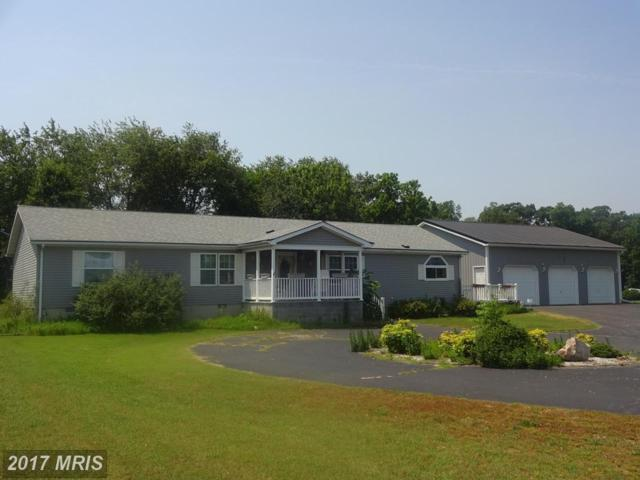 6614 Briar Patch Road, Hurlock, MD 21643 (#DO9977170) :: Pearson Smith Realty