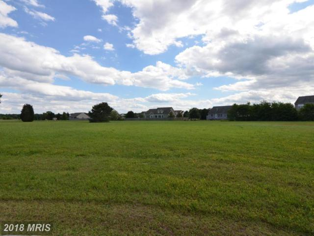 Michelles Lane, Tappahannock, VA 22560 (#ES9954748) :: Colgan Real Estate