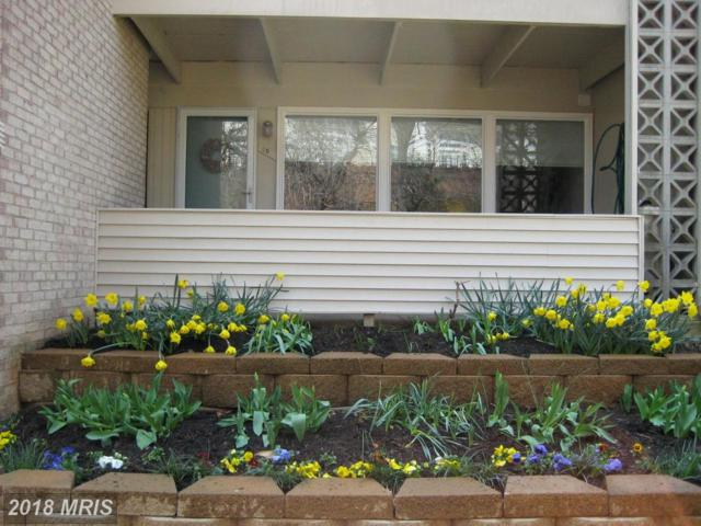 140 Birch Street B-4, Falls Church, VA 22046 (#FA10130351) :: Browning Homes Group