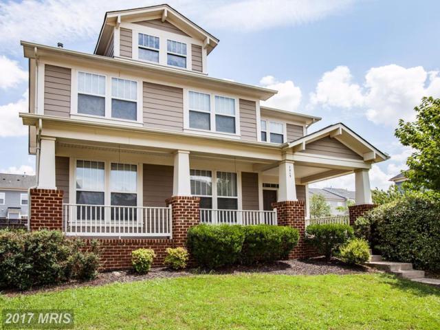 1015 Pickett Street, Fredericksburg, VA 22401 (#FB10004028) :: LoCoMusings