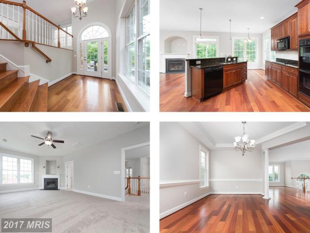 1413 Payne Street, Fredericksburg, VA 22401 (#FB10030790) :: Pearson Smith Realty