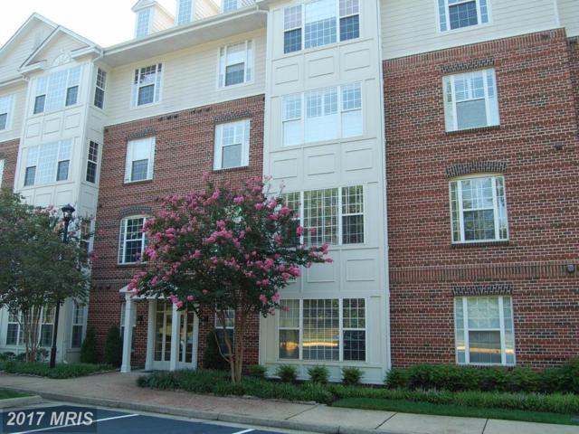 701 Cobblestone Boulevard T7, Fredericksburg, VA 22401 (#FB10036888) :: Pearson Smith Realty