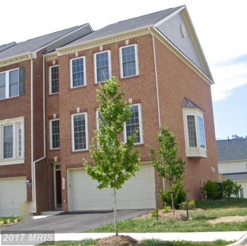 1027 Hotchkiss Place, Fredericksburg, VA 22401 (#FB10045816) :: Pearson Smith Realty