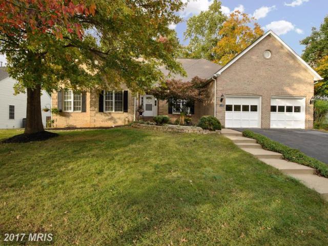 1013 Cadmus Drive, Fredericksburg, VA 22401 (#FB10074148) :: Pearson Smith Realty