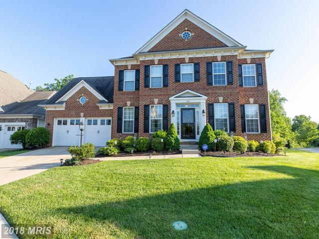 1212 Walker Drive, Fredericksburg, VA 22401 (#FB10252281) :: Bob Lucido Team of Keller Williams Integrity