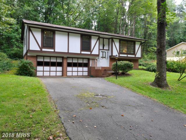 302 Altoona Drive, Fredericksburg, VA 22401 (#FB10318403) :: Keller Williams Pat Hiban Real Estate Group