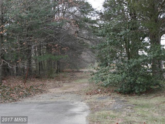 Greenway Drive, Fredericksburg, VA 22401 (#FB9851751) :: LoCoMusings